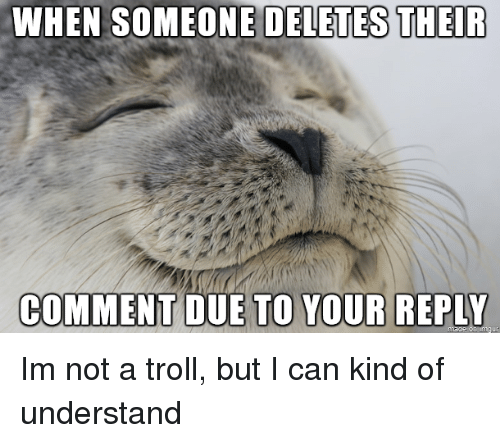 Troll, Can, and Comment: WHEN SOMEONE DELETES THEIR  COMMENT DUE  TO YOUR REPLY Im not a troll, but I can kind of understand