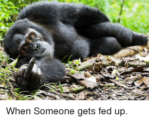 Fun, Fed Up, and You: When Someone gets fed up.