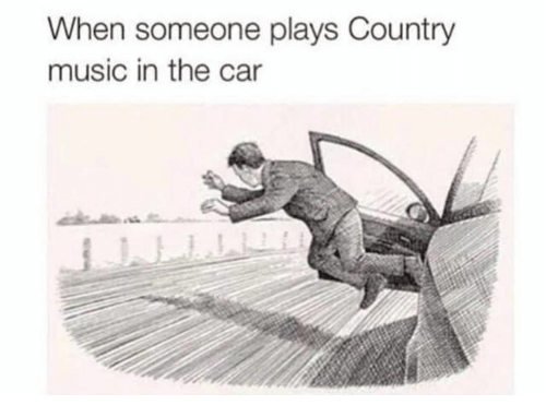 Country music: When someone plays Country  music in the car