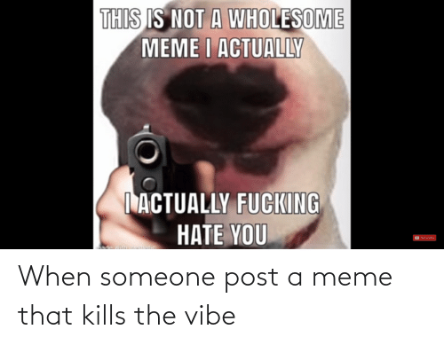 The Vibe: When someone post a meme that kills the vibe