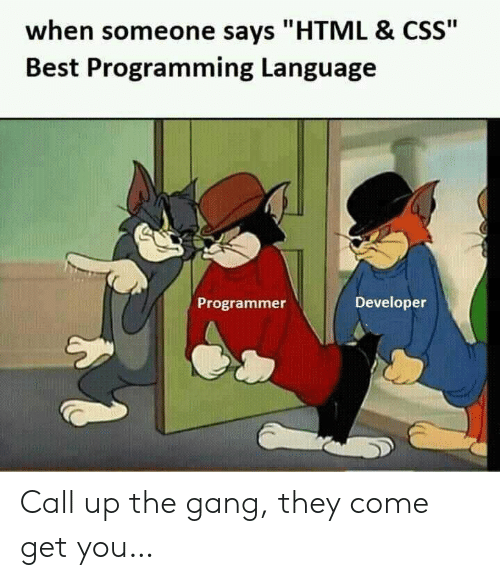 """Gang, Best, and Programming: when someone says """"HTML & CSS""""  Best Programming Language  Developer  Programmer Call up the gang, they come get you…"""
