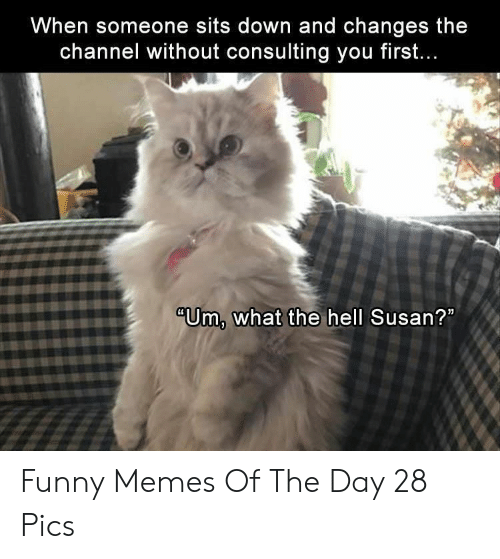 "Funny, Memes, and Hell: When someone sits down and changes the  channel without consulting you firsft.  ""Um, what the hell Susan? Funny Memes Of The Day 28 Pics"