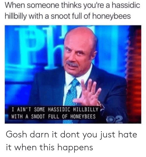 gosh darn it: When someone thinks you're a hassidic  hillbilly with a snoot full of honeybees  I AIN'T SOME HASSIDIC HILLBILLY  WITH A SNOOT FULL OF HONEYBEES Gosh darn it dont you just hate it when this happens