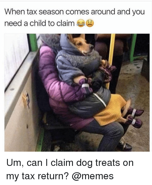 Can I Claim A Dog As A Dependent