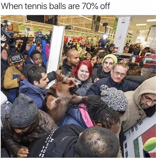 Nets: When tennis balls are 70% off  NETS