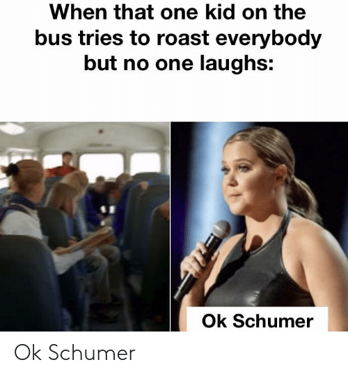 Reddit, Roast, and One: When that one kid on the  bus tries to roast everybody  but no one laughs:  Ok Schumer Ok Schumer