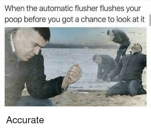 Poop, Reddit, and Got: When the automatic flusher flushes your  poop before you got a chance to look at it  dabmoms