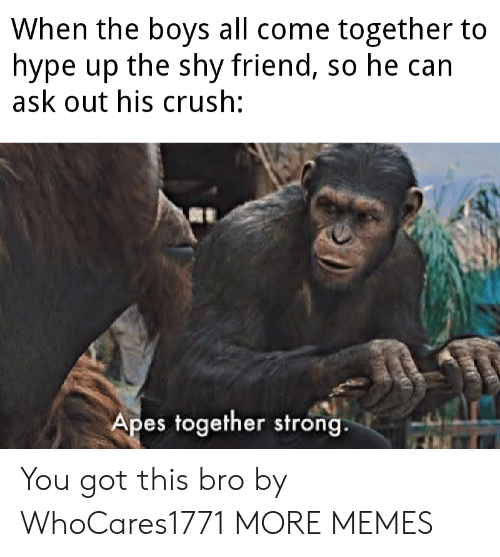 come together: When the boys all come together to  hype up the shy friend, so he can  ask out his crush:  Apes together strong. You got this bro by WhoCares1771 MORE MEMES