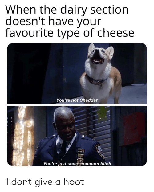 Bitch, Common, and Cheese: When the dairy section  doesn't have your  favourite type of cheese  You're not Cheddar  You're just some common bitch I dont give a hoot