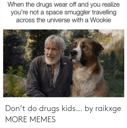 Travelling: When the drugs wear off and you realize  you're not a space smuggler travelling  across the universe with a Wookie Don't do drugs kids… by raikxge MORE MEMES