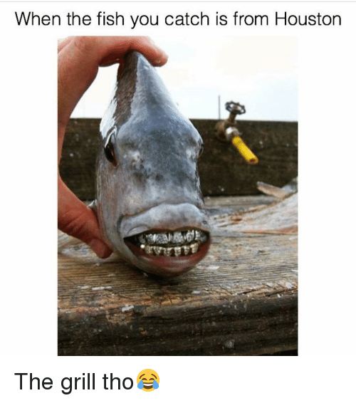 When The Fish You Catch Is From Houston The Grill Tho Fish Meme