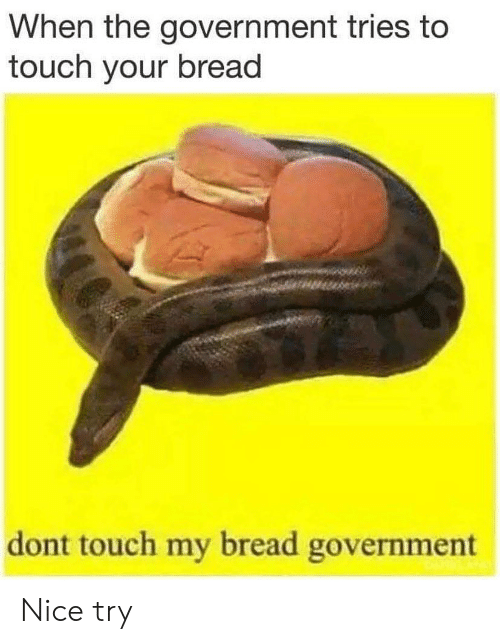 Memes, Government, and Nice: When the government tries to  touch your bread  dont touch my bread government Nice try