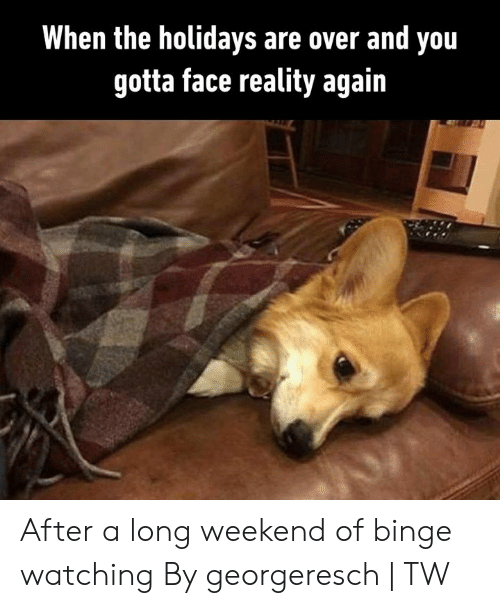 Dank, Reality, and 🤖: When the holidays are over and you  gotta face reality again After a long weekend of binge watching  By georgeresch | TW