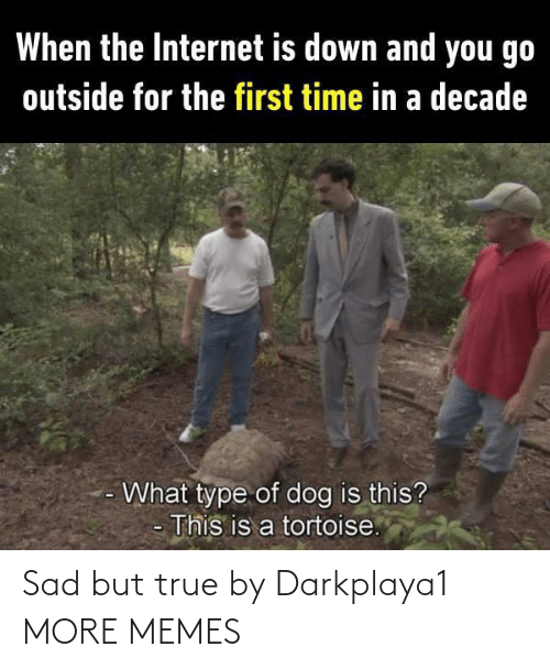 go outside: When the Internet is down and you go  outside for the first time in a decade  What type of dog is this?  This is a tortoise. Sad but true by Darkplaya1 MORE MEMES