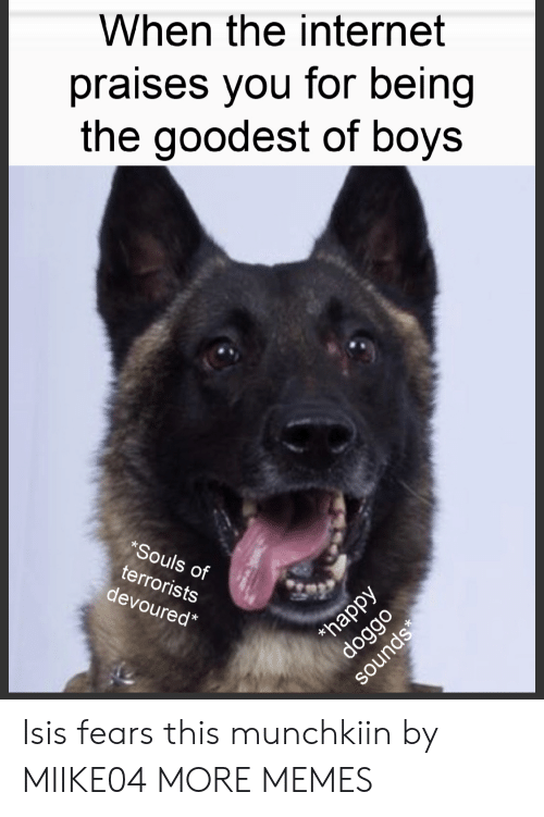 ISIS: When the internet  praises you for being  the goodest of boys  *Souls of  terrorists  devoured*  happy  doggo  sounds Isis fears this munchkiin by MIIKE04 MORE MEMES