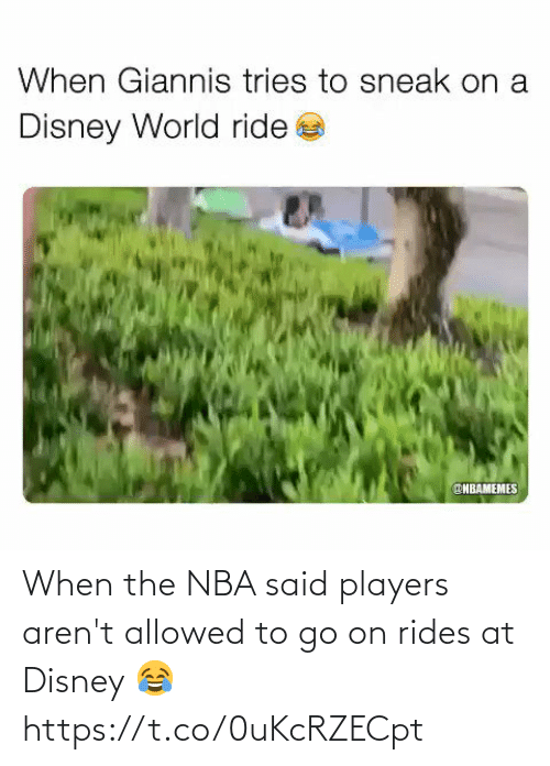 ballmemes.com: When the NBA said players aren't allowed to go on rides at Disney 😂 https://t.co/0uKcRZECpt