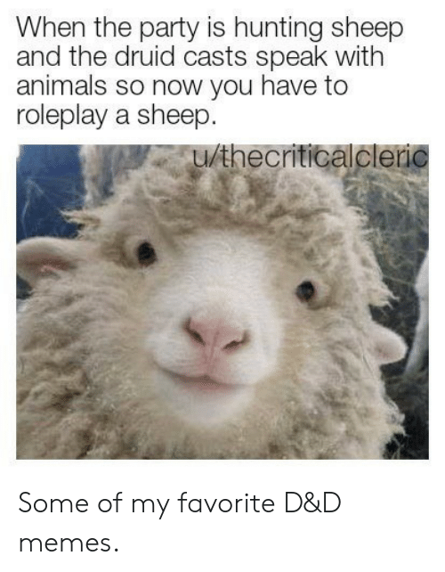 Animals, Memes, and Party: When the party is hunting sheep  and the druid casts speak with  animals so now you have to  roleplay a sheep.  u/thecriticalcleric Some of my favorite D&D memes.