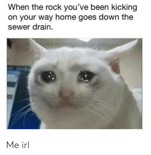 The Rock, Home, and Irl: When the rock you've been kicking  on your way home goes down the  sewer drain Me irl