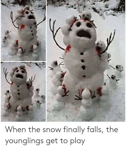 younglings: When the snow finally falls, the younglings get to play