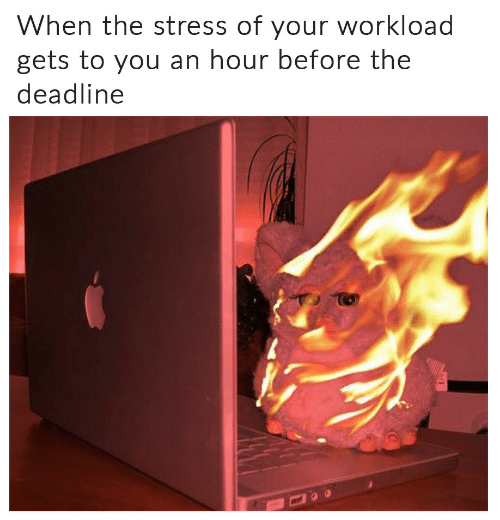 Stress, You, and Deadline: When the stress of your workload  gets to you an hour before the  deadline