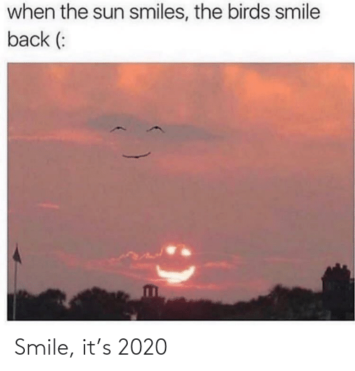 sun: when the sun smiles, the birds smile  back (: Smile, it's 2020