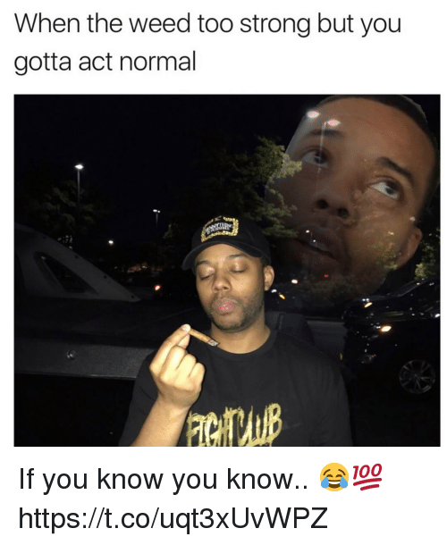 Weed, Strong, and Act: When the weed too strong but you  gotta act normal If you know you know.. 😂💯 https://t.co/uqt3xUvWPZ
