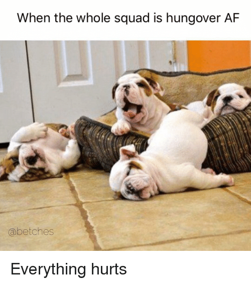 Everything Hurts: When the whole squad is hungover AF  abetches Everything hurts