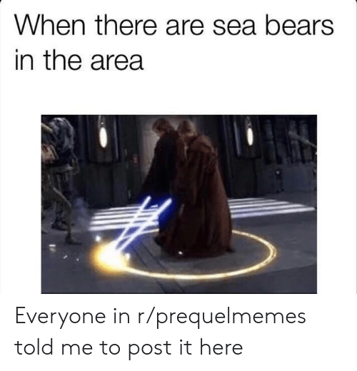 Prequelmemes: When there are sea bears  in the area Everyone in r/prequelmemes told me to post it here