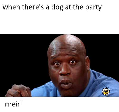 the party: when there's a dog at the party meirl