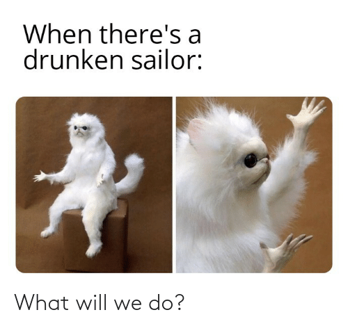 We Do: When there's a  drunken sailor: What will we do?