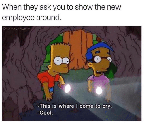 Employee: When they ask you to show the new  employee around.  @humor me_pink  -This is where I come to cry.  -Cool.