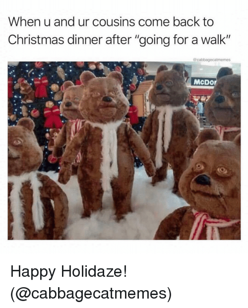 "christmas dinner: When u and ur cousins come back to  Christmas dinner after ""going for a walk""  @cabbagecatmemes  McDor Happy Holidaze! (@cabbagecatmemes)"