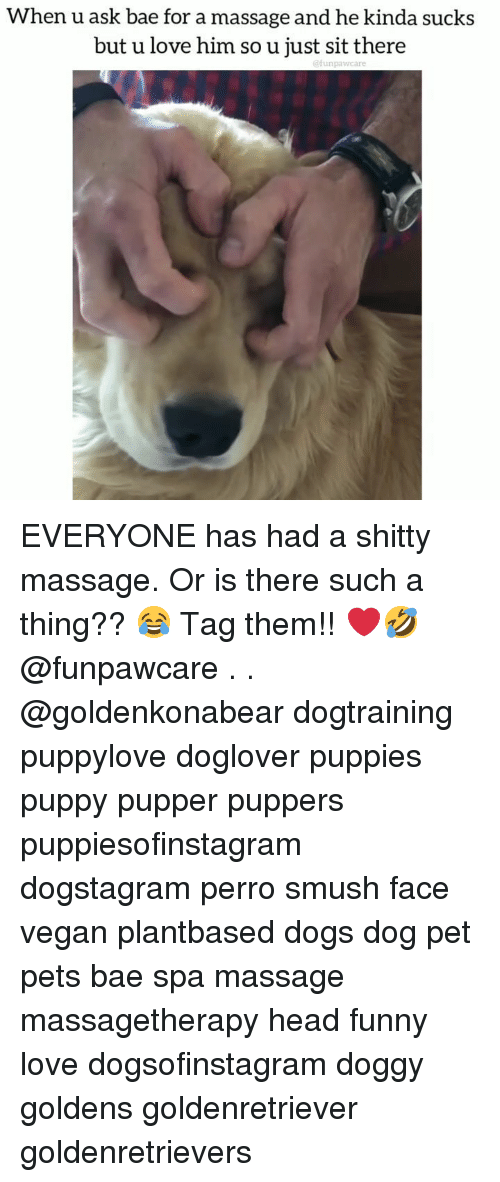 Bae, Dogs, and Funny: When u ask bae for a massage and he kinda sucks  but u love him so u just sit there  funpawcare EVERYONE has had a shitty massage. Or is there such a thing?? 😂 Tag them!! ❤️🤣 @funpawcare . . @goldenkonabear dogtraining puppylove doglover puppies puppy pupper puppers puppiesofinstagram dogstagram perro smush face vegan plantbased dogs dog pet pets bae spa massage massagetherapy head funny love dogsofinstagram doggy goldens goldenretriever goldenretrievers