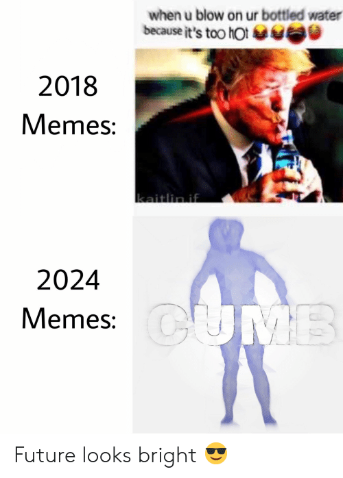 Bottled Water: when u blow on ur bottled water  because it's too hot  2018  Memes:  2024  Memes: Future looks bright 😎