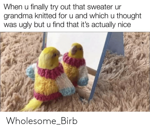 sweater: When u finally try out that sweater ur  grandma knitted for u and which u thought  was ugly but u find that it's actually nice Wholesome_Birb