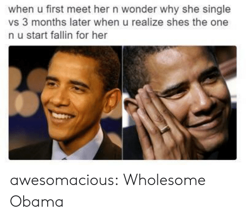 Obama, Tumblr, and Blog: when u first meet her n wonder why she single  vs 3 months later when u realize shes the one  n u start fallin for her awesomacious:  Wholesome Obama