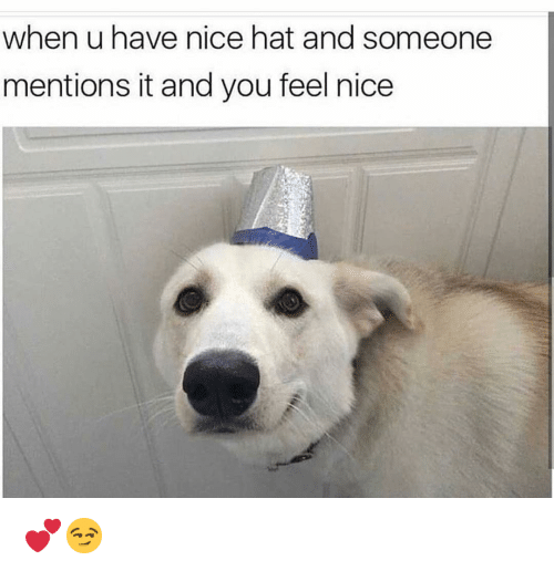 Funny, Nice, and You: when u have nice hat and someone  mentions it and you feel nice 💕😏