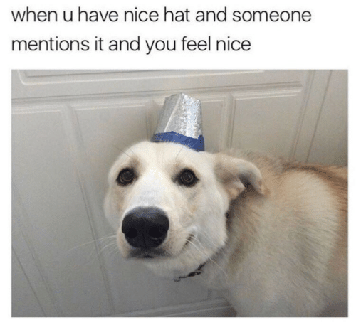 Nice, You, and Hat: when u have nice hat and someone  mentions it and you feel nice