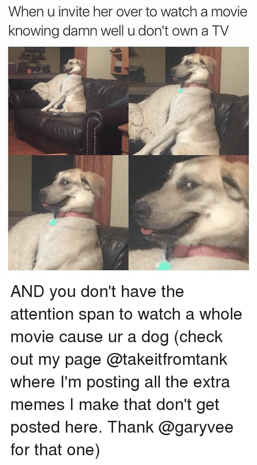 invitations: When u invite her over to watch a movie  knowing damn well u don't own a TV AND you don't have the attention span to watch a whole movie cause ur a dog (check out my page @takeitfromtank where I'm posting all the extra memes I make that don't get posted here. Thank @garyvee for that one)