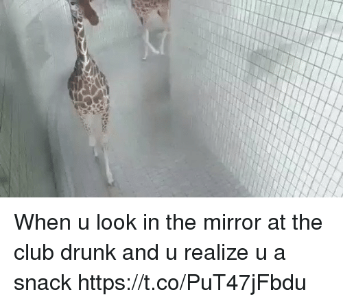 Drunked: When u look in the mirror at the club drunk and u realize u a snack https://t.co/PuT47jFbdu