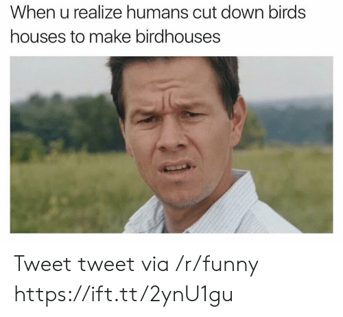 Funny, Birds, and Down: When u realize humans cut down birds  houses to make birdhouses Tweet tweet via /r/funny https://ift.tt/2ynU1gu