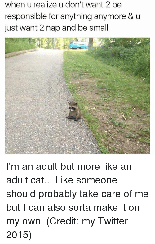 take care of me: when u realize u don't want 2be  responsible for anything anymore & u  just want 2 nap and be small I'm an adult but more like an adult cat... Like someone should probably take care of me but I can also sorta make it on my own. (Credit: my Twitter 2015)