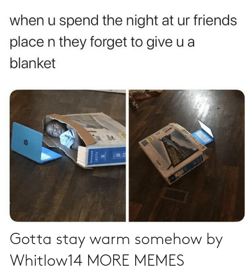 Dank, Friends, and Memes: when u spend the night at ur friends  place n they forget to give u a  blanket  EDT  LEDTV Gotta stay warm somehow by Whitlow14 MORE MEMES
