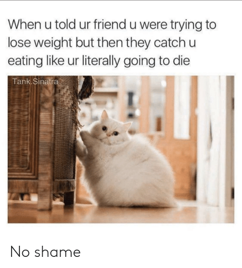 Tank, Sinatra, and Shame: When u told ur friend u were trying to  lose weight but then they catch u  eating like ur literally going to die  Tank.Sinatra No shame