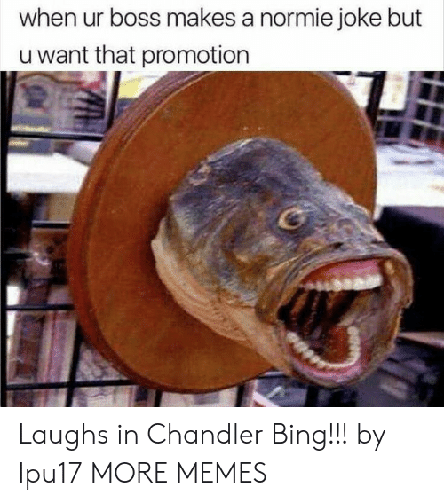 Chandler Bing, Dank, and Memes: when ur boss makes a normie joke but  u want that promotion Laughs in Chandler Bing!!! by Ipu17 MORE MEMES