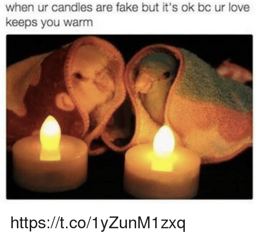 Fake, Love, and Memes: when ur candles are fake but it's ok bc ur love  keeps you warm https://t.co/1yZunM1zxq