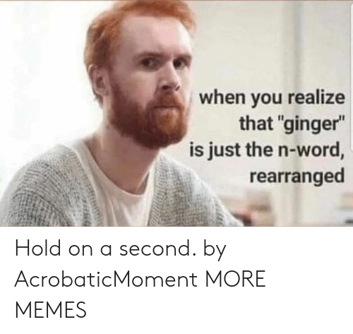 """Dank, Memes, and Target: when vou realize  that """"ginger""""  is just the n-word,  rearranged Hold on a second. by AcrobaticMoment MORE MEMES"""