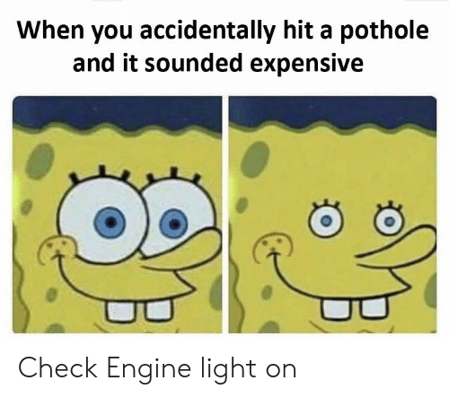 Light, Engine, and Check: When you accidentally hit a pothole  and it sounded expensive Check Engine light on