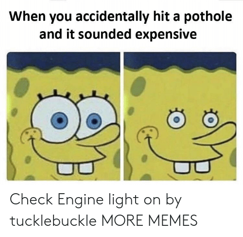 Dank, Memes, and Target: When you accidentally hit a pothole  and it sounded expensive Check Engine light on by tucklebuckle MORE MEMES