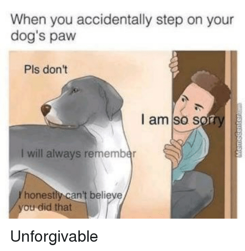 unforgivable: When you accidentally step on your  dog's paw  Pls don't  I am so sot  I will always remember  honestly can't believe <p>Unforgivable</p>